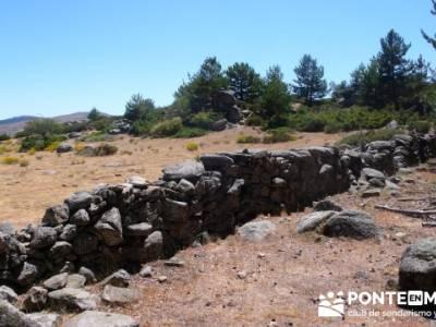 Pinar de Canencia y Mina de Plata del Indiano; material trekking; viajes marzo